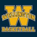 wellington wolves