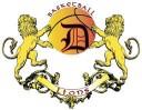 D Lions Future Stars